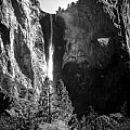 Ansel Adams 3 Per Day - Black and White Only - Art Group